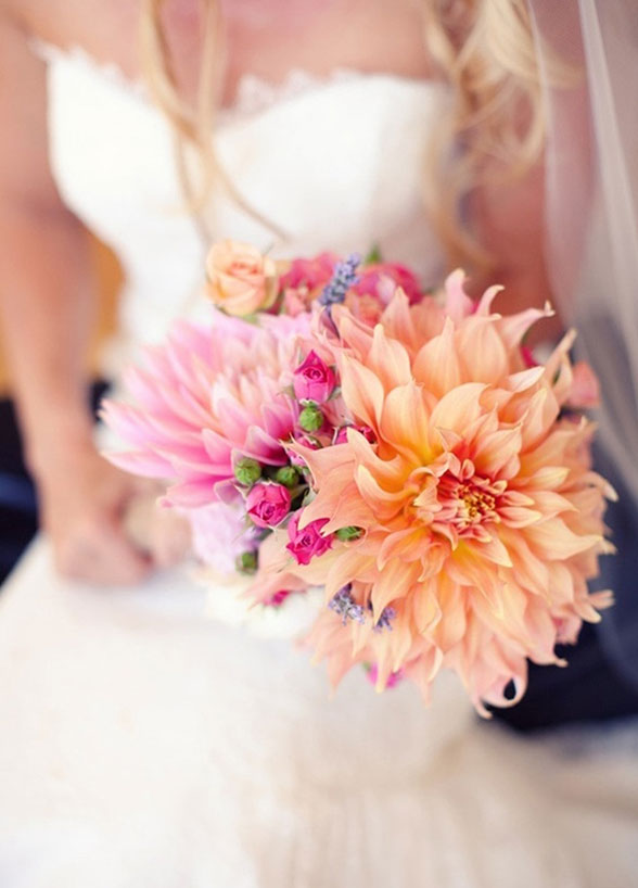 Summer flowers - dahlias