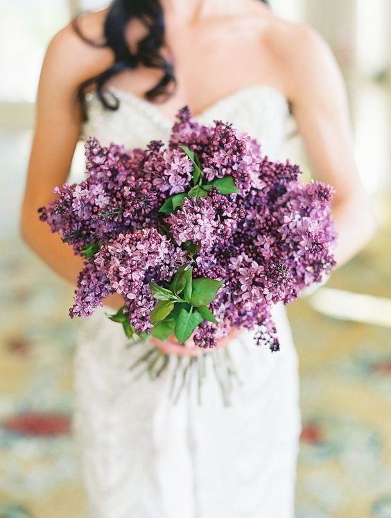 Summer flowers - lilacs