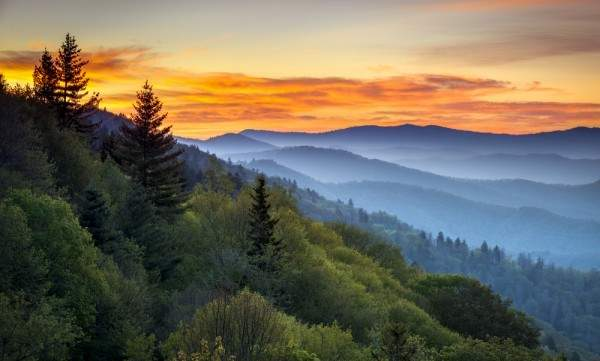 the Great Smoky Mountains in Asheville, NC