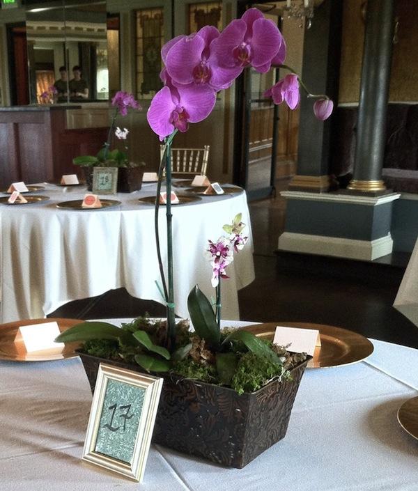 wedding table decorations Orchid Terrarium orchid pot Wedding Decor Plant pot Moss terrarium Orchid table centerpiece Terrarium