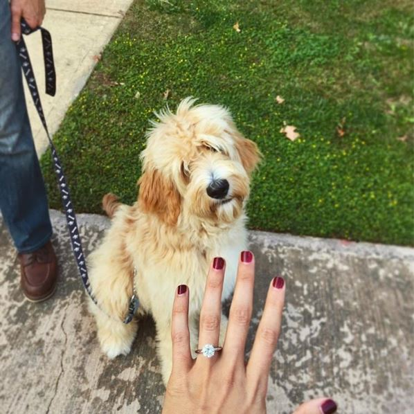 just engaged 6