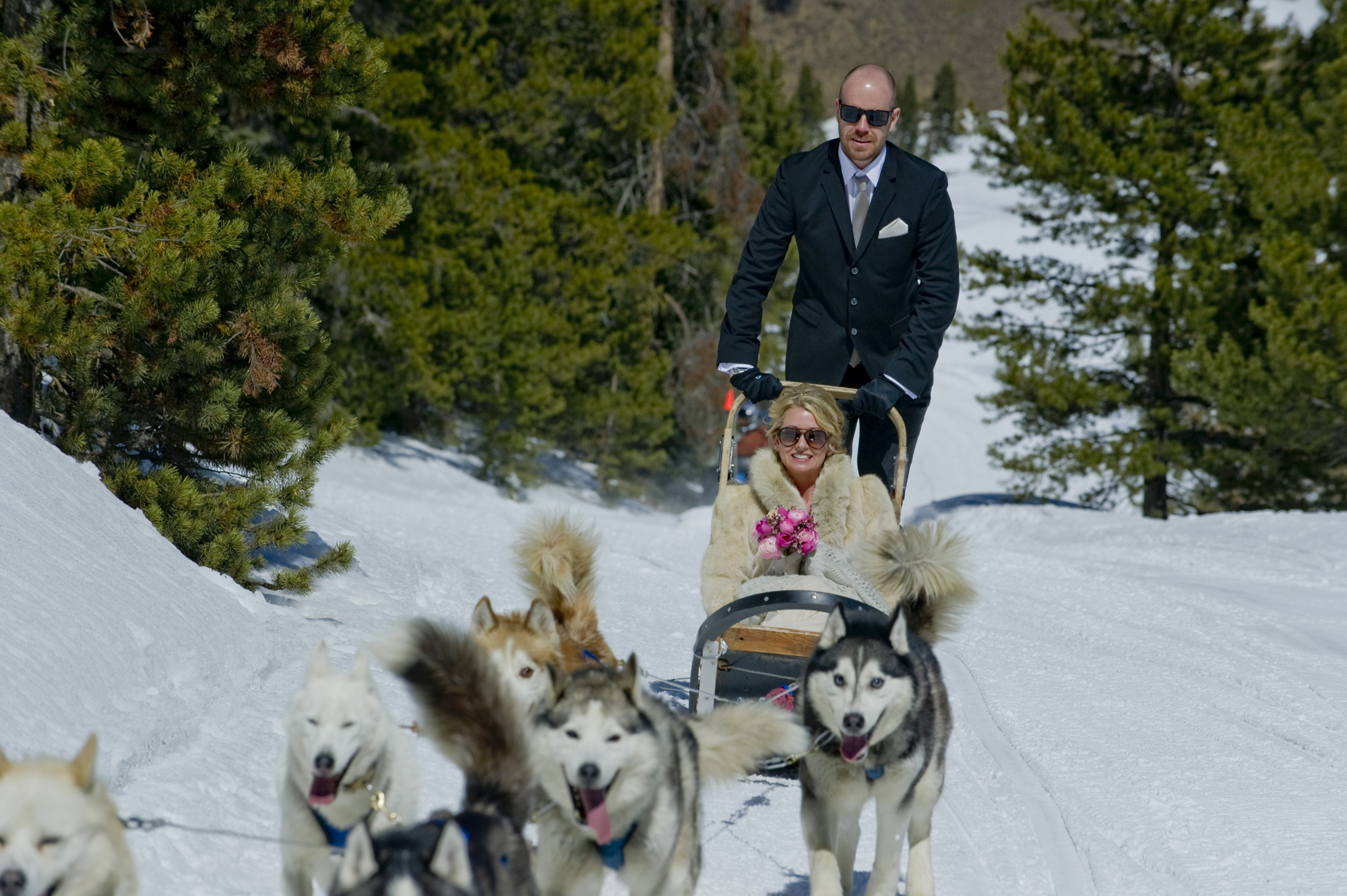 Winter wonderland mountain fun