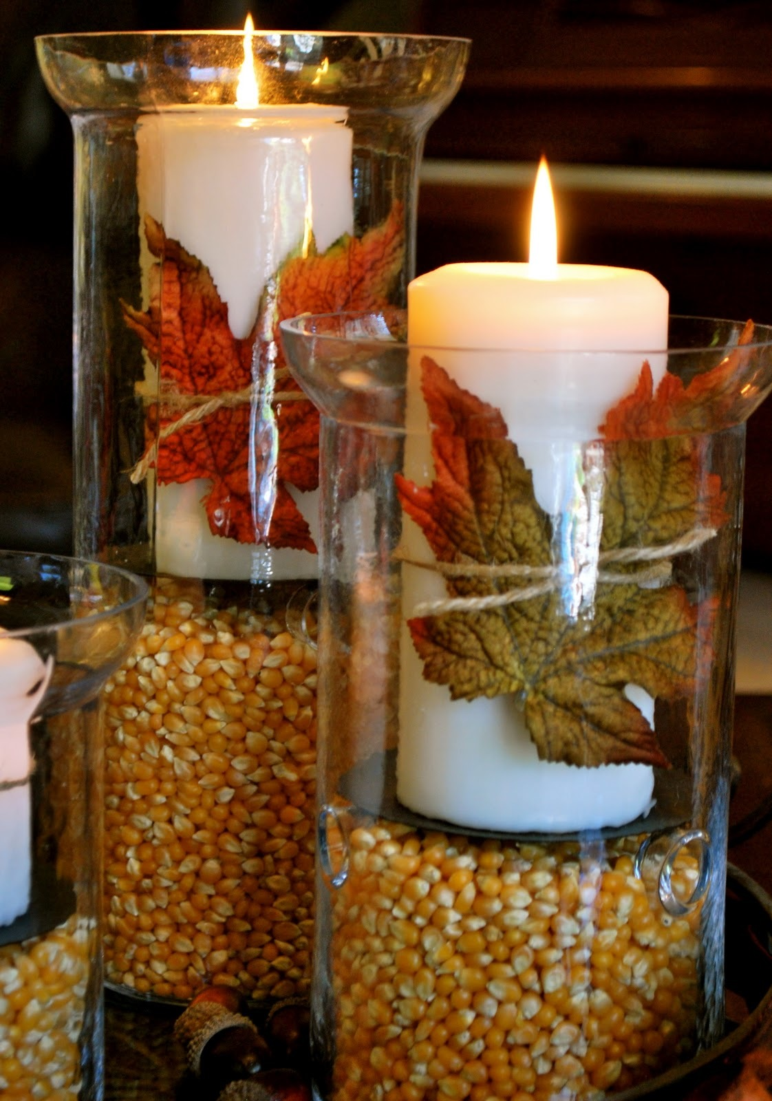 Candlelit Leaves