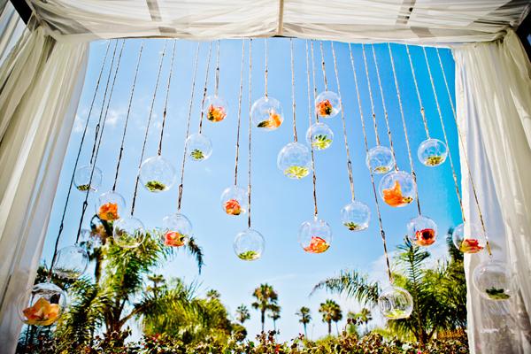 Unique hanging installation