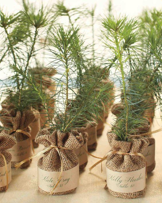 DIY Christmas tree wedding favors