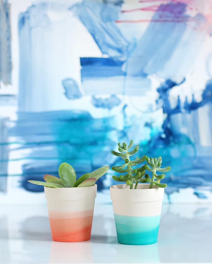 DIY Dip Dye Ombre Succulent Pots via I Spy DIY