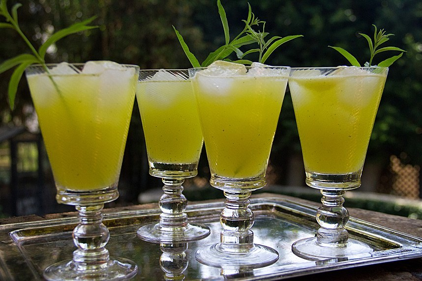 lemon verbena cocktail