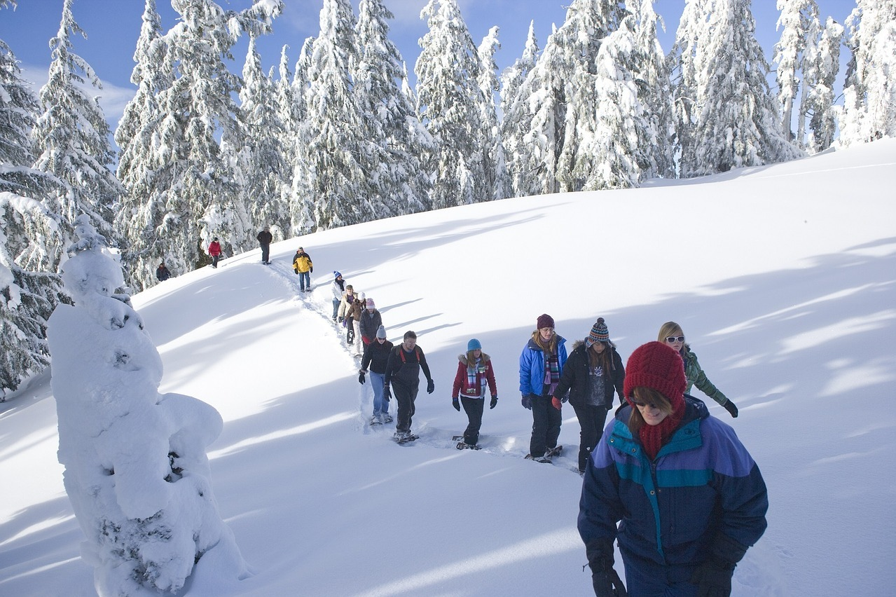 Snowshoe Nature Tour