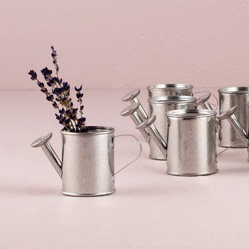 Watering Can Favor